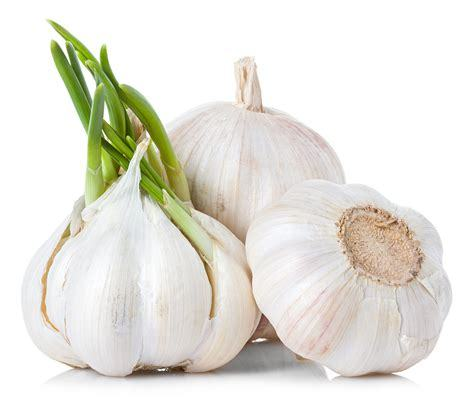 52 Cloves of Garlic plus Message from the Collective